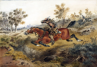 S.T. Gill, 'Hard-pressed, or flight of a bushranger', 1874. Source: State Library of New South Wales