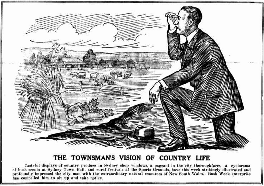 From The Farmer and Settler, 13 February 1920. Image: Trove