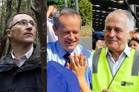 Greens, Labor, or Coalition?